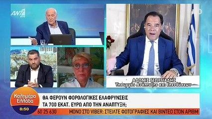 Κόλλησε το Skype του Άδωνι Γεωργιάδη