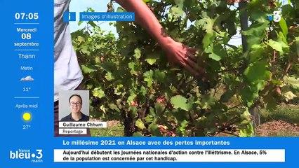 08/09/2021 - Le 6/9 de France Bleu Alsace en vidéo