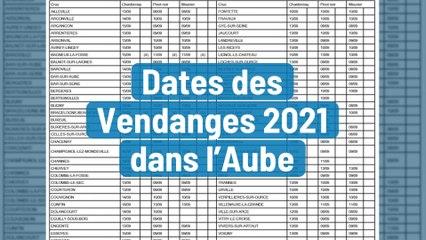 Dates des Vendanges 2021 dans l'Aube