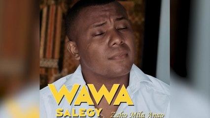 Wawa Salegy - Zaho Mila Anao - audio