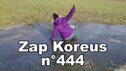 Zap Koreus n°444