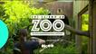 Une saison au zoo  - Bande annonce S14 V2