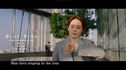 丁噹 - 【Blue Bird】Official Music Video