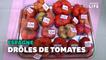 Ce concours élit la tomate la plus moche d'Espagne