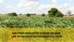Wikithuki irrigation scheme regains life following aborted presidential tour