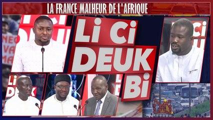 LA FRANCE MALHEUR DE L'AFRIQUE
