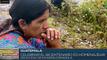 Pueblos nativos de Guatemala rechazan celebración del Bicentenario