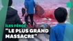 Plus de 1400 dauphins tués lors d'une chasse traditionnelle aux îles Féroé