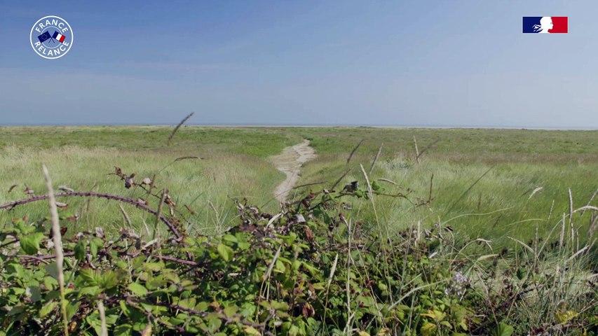 Parc des marais du Cotentin et du Bessin