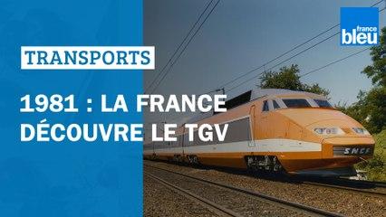 TGV : en 1981, les Français découvrent le train à grand vitesse