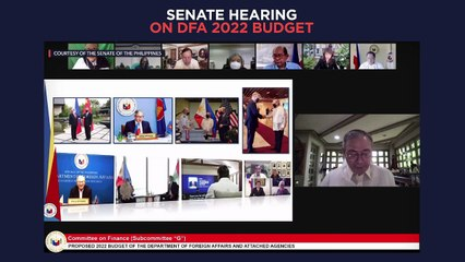 Senate hearing on proposed 2022 budget for DFA