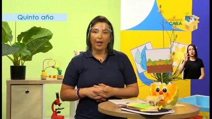 #AprendoEnCasa Ciencias: Nutrición autótrofa y heterótrofa (Quinto Año - Primaria)