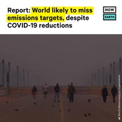 World Likely to Miss Emission Targets Despite COVID Reductions