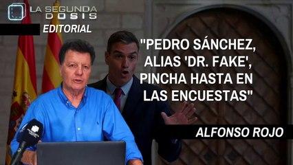 """Alfonso Rojo: """"Pedro Sanchez, alias 'Dr Fake', pincha hasta en las encuestas"""""""