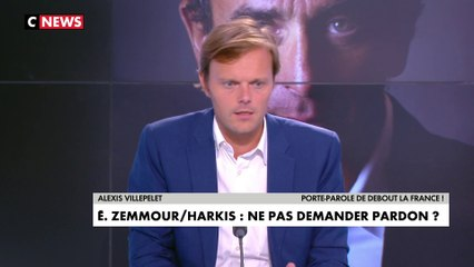Alexis Villepelet : «Les Harkis ont été traités comme des chiens»