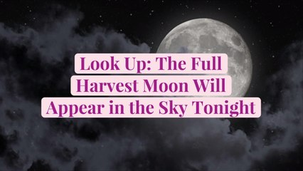 Look Up: The Full Harvest Moon Will Appear in the Sky Tonight