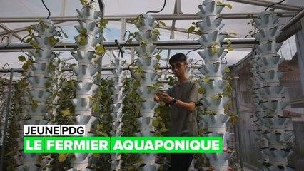 Jeune PDG : la ferme aquaponique