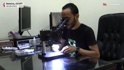 """شاهد: فنان مصري ينحتُ مجسّماتٍ """"مجهرية"""" لأبرز معالم الآثار الفرعونية"""