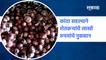Aurangabad News | कांदा सडल्याने शेतकऱ्यांचे लाखो रुपयांचे नुकसान | Farmers  | Onion | Sakal Media