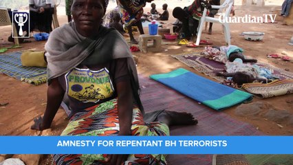 Nigerians on amnesty for repentant terrorists