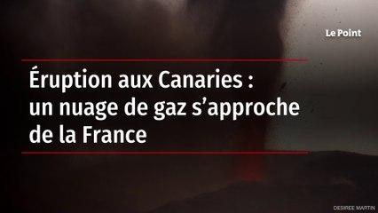 Éruption aux Canaries : un nuage de gaz s'approche de la France