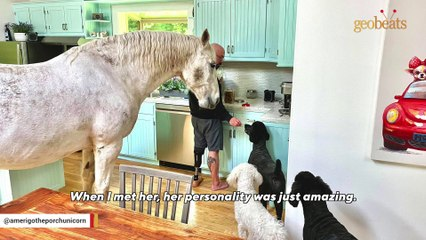 A horse crushed this man's leg. His response will melt your heart.