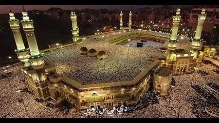 هانى شاكر يطلق مملكة الخير احتفالا باليوم الوطنى للمملكة السعودية