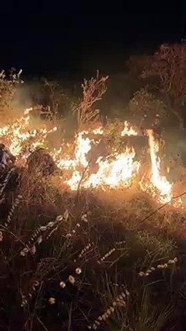 Queimada na Chapada dos Veadeiros invade Parque Nacional, diz CBMDF