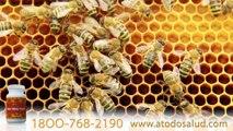 BEE BEE CURE