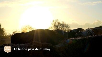Le lait du pays de Chimay