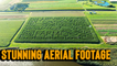 'Stunning aerial footage shows INSANELY DETAILED corn maze in all its glory'
