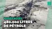 """Californie: La marée noire entraîne des """"conséquences irréversibles sur l'environnement"""""""