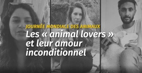 Journée mondiale des animaux : les « animal lovers » et leur amour inconditionnel