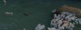 La pollution plastique en 10 chiffres