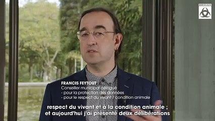 Que fait Bordeaux pour la condition animale ?
