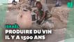 En Israël, découverte d'une usine à vin vielle de 1500 ans