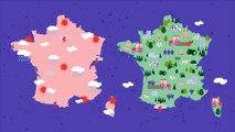 Stocker du carbone dans les écosystèmes : quels enjeux autour de la plantation d'arbres hors forêt ?