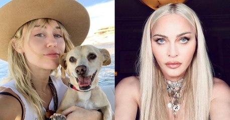 Miley Cyrus, Madonna y otras famosas que mostraron sin miedo sus axilas con vellos