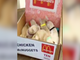 PUPPY COSTUMES! Dogs dressed as McDonald's nuggets for Halloween - ABC15 Digital