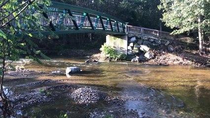 Les berges du lignon restaurées pour les marcheurs du chemin de Compostelle. - Reportage TL7 - TL7, Télévision loire 7