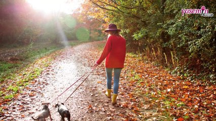 Sonbahar depresyonu nedir? Depresyona karşı en etkili çözümler...
