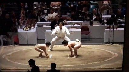 Le petit sumo qui surprend son adversaire
