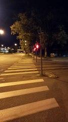 Grenoble  Octobre  2021 #France  #Isère   #grenoble #grenoblecity  #grenobletourisme   #grenoblealpesmetropole  #grenoblelife (75)