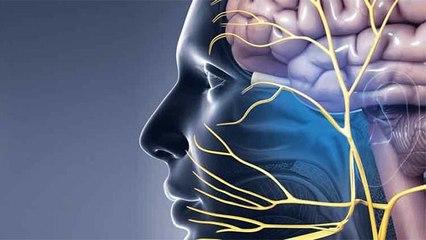Face पर Pain होता है Trigeminal Neuralgia जैसी गंभीर बीमारी का संकेत जाने Symptoms और उपाय । Boldsky
