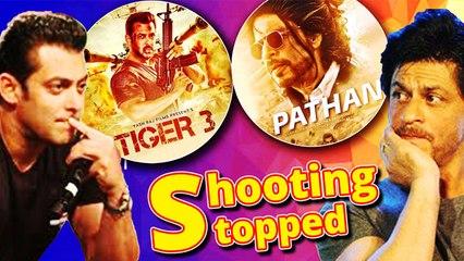 शाहरुख खान और सलमान खान स्टारर फिल्म 'पठान' और 'टाइगर 3' की शूटिंग रुकी