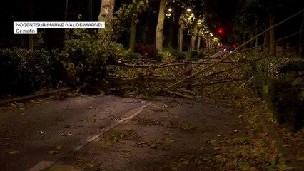 Vents violents: de nombreux arbres couchés sur les routes à Nogent-sur-Marne