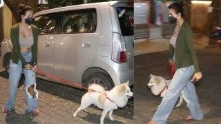 Actress Malaika Arora को उनके कुत्ते ने खूब दौड़ाया, परेशान होकर वापस घर लौटीं   FilmiBeat