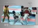 Taekwondo-demo