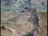 L'arche de Noé Retrouvée ...