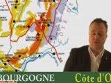 Les vins de Bourgogne : cours académie du vin